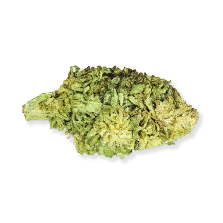 Cheese Flor CBD, olor y sabor muy pronunciados