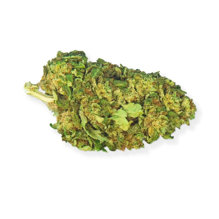 Skunk cbd flower known worldwide for its intoxicating fragrance